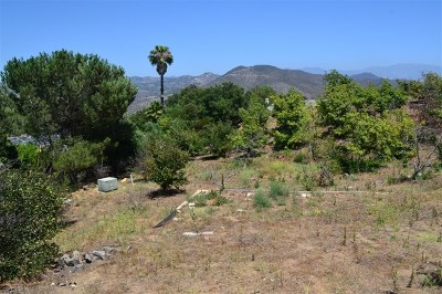Fallbrook Residential Lots & Land For Sale: Dos Ninos Rd