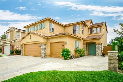 Murrieta Single Family Home For Sale: 38039 Orange Blossom Ln