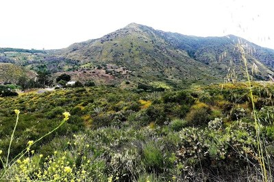 Fallbrook Residential Lots & Land For Sale: Vist Del Rio