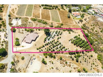 Fallbrook Single Family Home For Sale: 1402 Riverview Dr