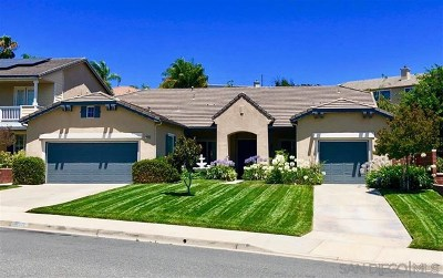Murrieta Single Family Home For Sale: 38932 Cherry Point Ln