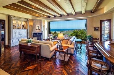 Solana Beach Single Family Home For Sale: 528 Canyon Dr