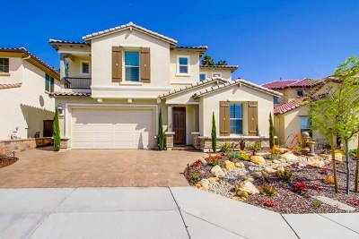 Vista Single Family Home For Sale: 449 Cota Lane