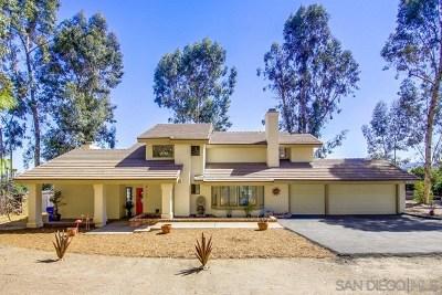 El Cajon Single Family Home For Sale: 610 Sun Meadow Drive