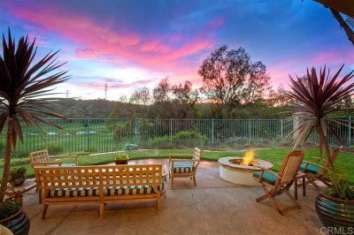 Carlsbad Single Family Home For Sale: 6749 Mallee St