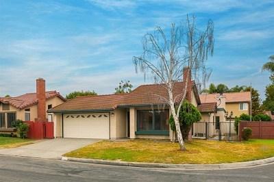 Oceanside Single Family Home For Sale: 267 Chestnut Way