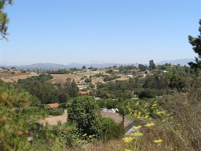 Fallbrook Residential Lots & Land For Sale: 5016 Sleeping Indian Rd