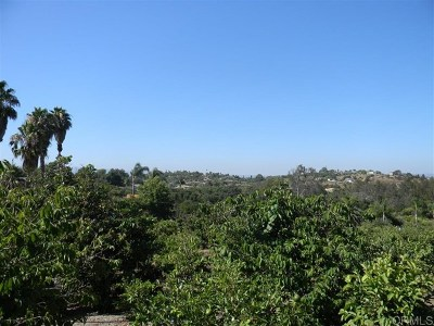 Fallbrook Residential Lots & Land For Sale: Sleeping Indian Road