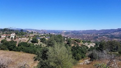 Fallbrook Residential Lots & Land For Sale: 1052 N N Stage Coach Ln