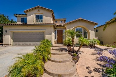 Chula Vista Single Family Home For Sale: 1053 Morgan Hill Dr