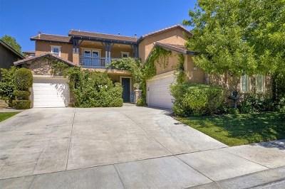 Murrieta Single Family Home For Sale: 27189 Pumpkin Street