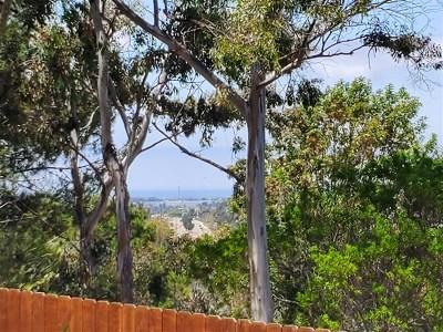 San Marcos Condo/Townhouse For Sale: 870 S S Rancho Santa Fe Rd #C