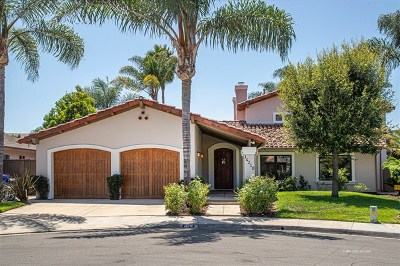 Rancho Santa Fe Single Family Home For Sale: 16210 Via Pacifica