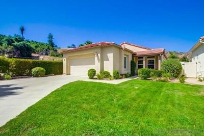 Escondido Single Family Home For Sale: 2302 Fallbrook Place