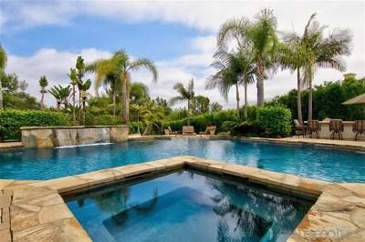 Rancho Santa Fe Single Family Home For Sale: 17153 Camino Acampo
