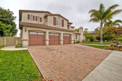 Encinitas Single Family Home For Sale: 540 Nobel Ct