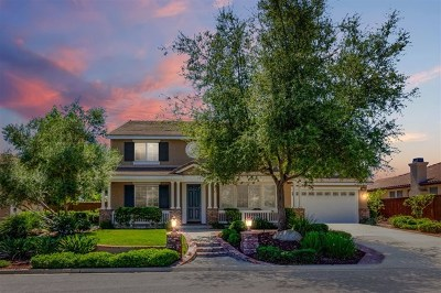 Escondido Single Family Home For Sale: 10563 Laurel Path