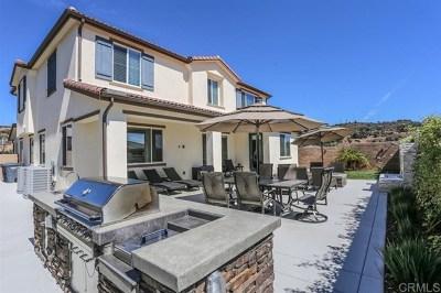 Escondido Single Family Home For Sale: 2087 Del Rincon Pl