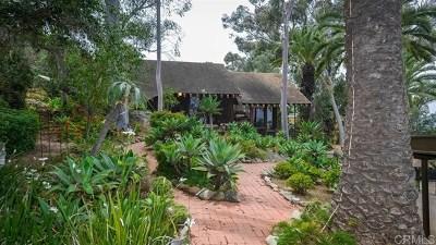 La Mesa Single Family Home For Sale: 9633 El Granito
