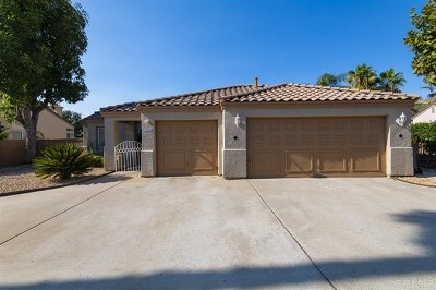 Escondido Single Family Home For Sale: 1344 Ward Pl