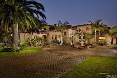 Encinitas Single Family Home For Sale: 1428 Bella Azul Ct
