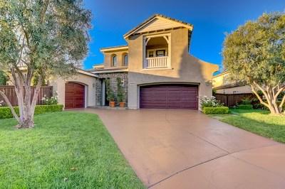 San Marcos Single Family Home For Sale: 943 Stoneridge Way