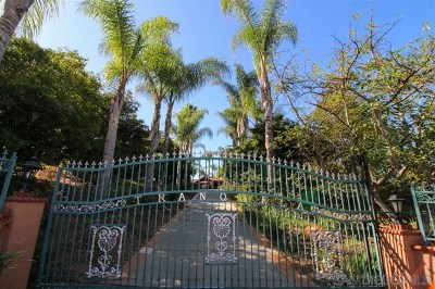 Fallbrook Single Family Home For Sale: 2369 Vern Drive