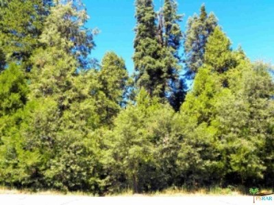 Lake Arrowhead CA Residential Lots & Land For Sale: $24,900