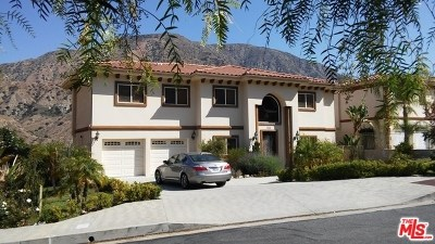 Tujunga Single Family Home For Sale: 11471 Sierra Ranch View Road