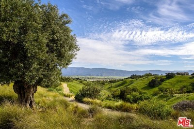Santa Ynez Single Family Home For Sale: 2775 Roundup Road