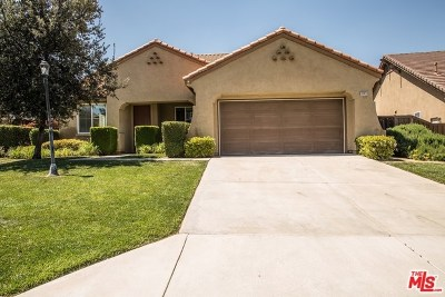 Wildomar Single Family Home For Sale: 33823 Wagon Train Drive
