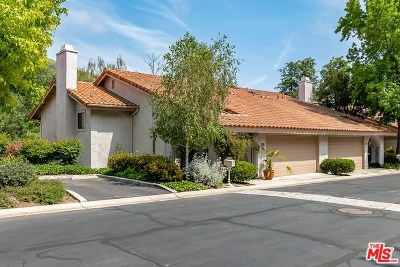 Westlake Village Condo/Townhouse For Sale: 766 N Valley Drive