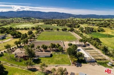 Santa Ynez Single Family Home For Sale: 1801 Stallion Drive