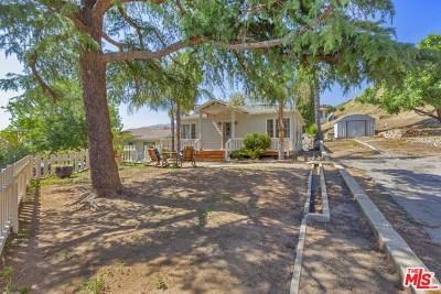 Tujunga Single Family Home For Sale: 11170 Tujunga Canyon Boulevard
