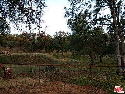 Fresno Residential Lots & Land For Sale: 36188 Sage Ln