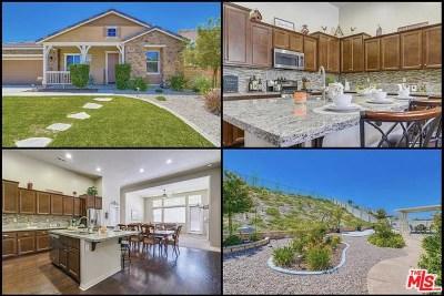 Menifee Single Family Home For Sale: 25831 Wilderness Way