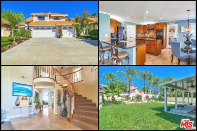 Murrieta Single Family Home For Sale: 41399 Lily Avenue