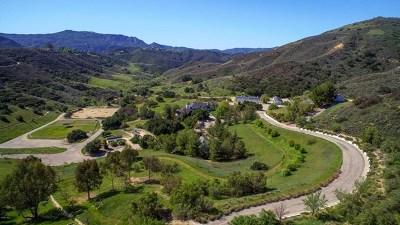 Calabasas Single Family Home For Sale: 24900 Paseo Del Rancho