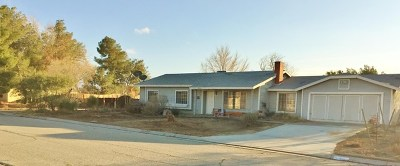 Littlerock Single Family Home Active Under Contract: 9734 Avenue R10