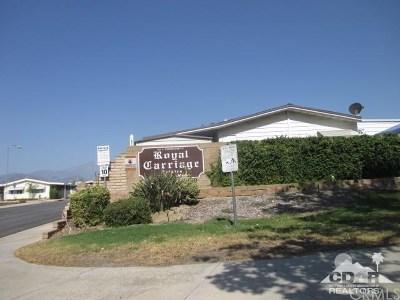 Redlands Single Family Home For Sale: 1433 Village Street