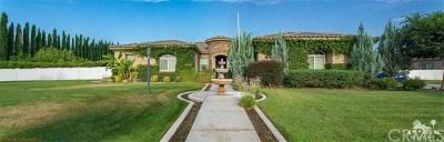 Hemet Single Family Home For Sale: 1263 Palomino Court