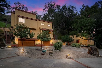 Calabasas Single Family Home For Sale: 833 Malibu Meadows Drive