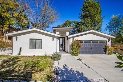 Woodland Hills Single Family Home For Sale: 4841 Bruges Avenue