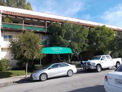 Encino Condo/Townhouse Active Under Contract: 5460 White Oak Avenue #E118