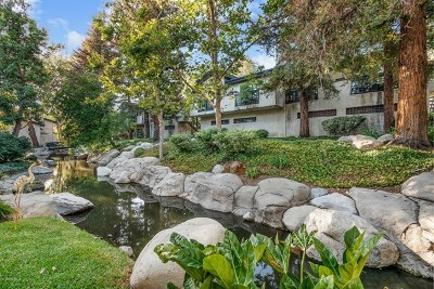 Agoura Hills Condo/Townhouse For Sale: 5736 Skyview Way #F