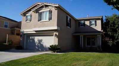 Castaic Single Family Home For Sale: 29774 Cambridge Avenue