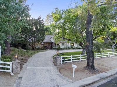 Hidden Hills Single Family Home For Sale: 5287 Round Meadow Road