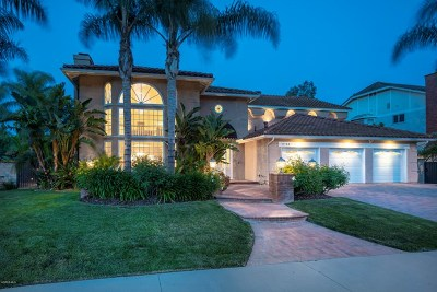 Agoura Hills Single Family Home For Sale: 6144 Grey Rock Road
