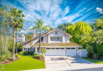 Calabasas Single Family Home For Sale: 24720 Via Pradera