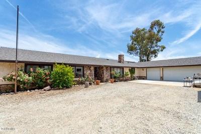Agua Dulce Single Family Home For Sale: 6250 Juniper Crest Road